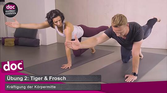 Yoga für Anfänger – Tiger und Frosch